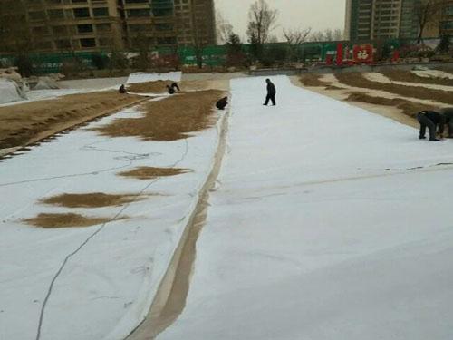 景观池专用复合土工膜