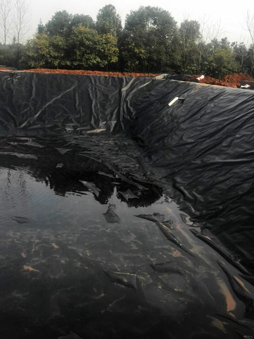 水库防渗材料土工膜和防水毯那个效果好