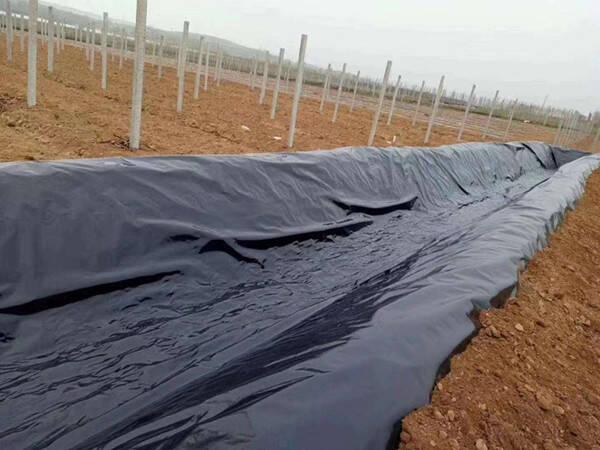 土工膜铺设时常用的3类排气措施