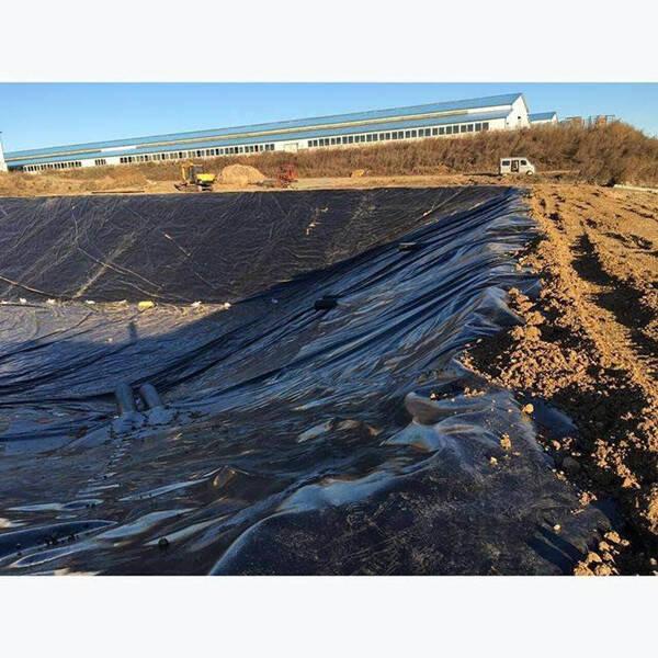 水平土工膜防渗低水头施工案例