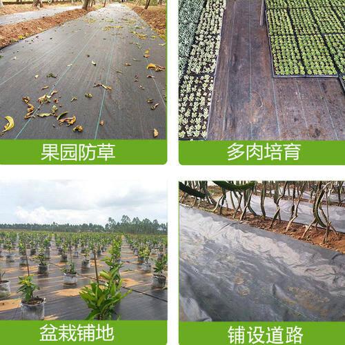 花草种植中使用防草布可提高种植技术